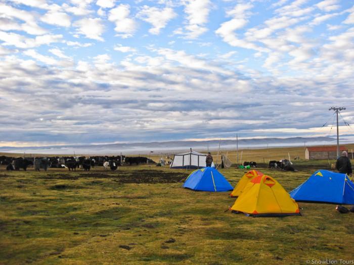палаточный лагерь в степях Цеког