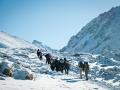 trekking-up-to-dolma-la-pass-in-mt-kailash-kora