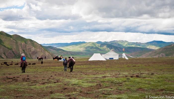 на тропе коры живет много семей тибетских кочевников