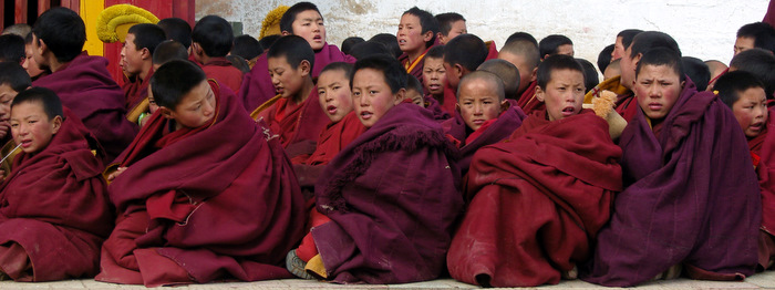 Chanting Monks at Kirti Monastery