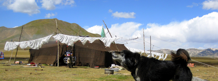 Traditional Nomad Tent in Amdo