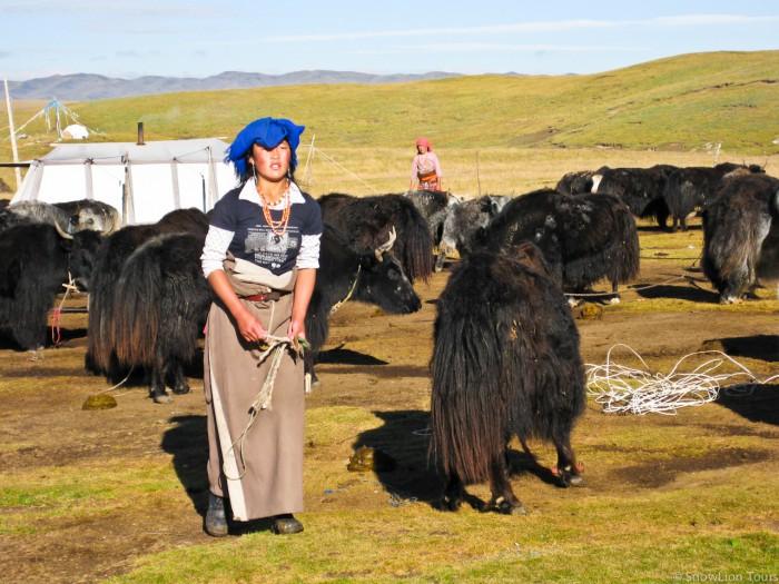 тибетка из семьи кочевников степей Цеког