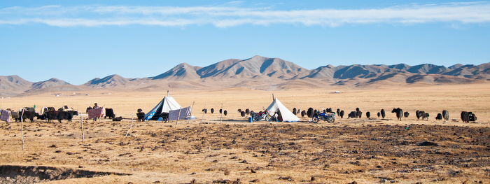 этно-туры к кочевникам